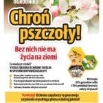 Chroń pszczoły!